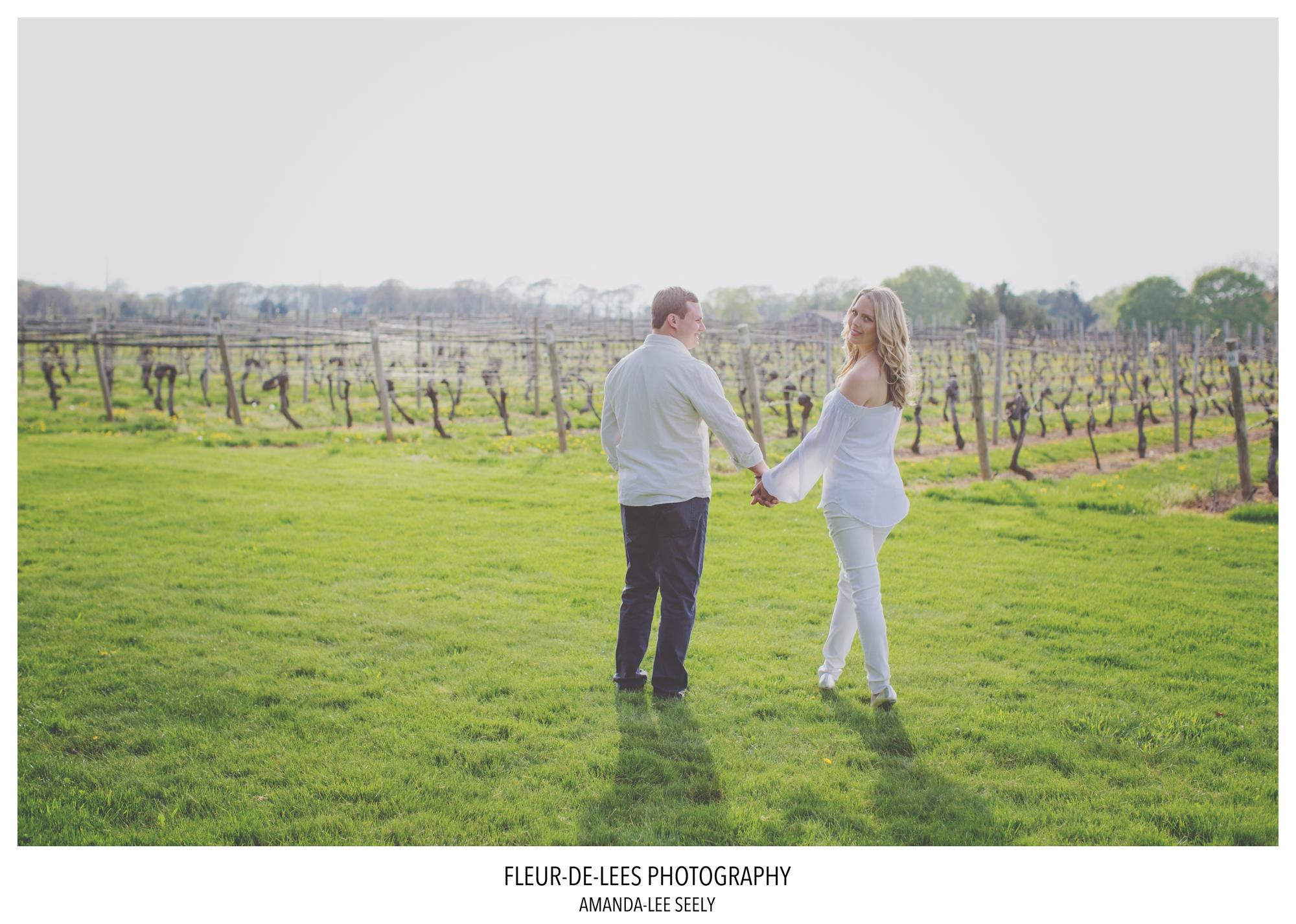 north shore vineyards
