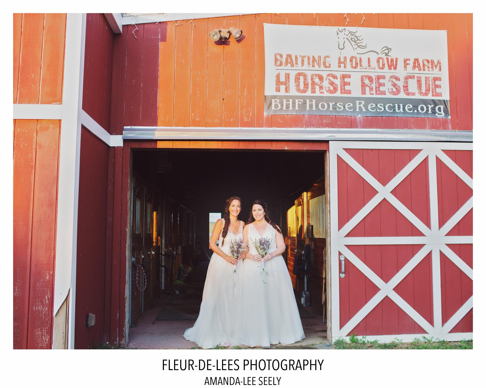 BLOG RACHEL AND AMANDA WEDDING 90
