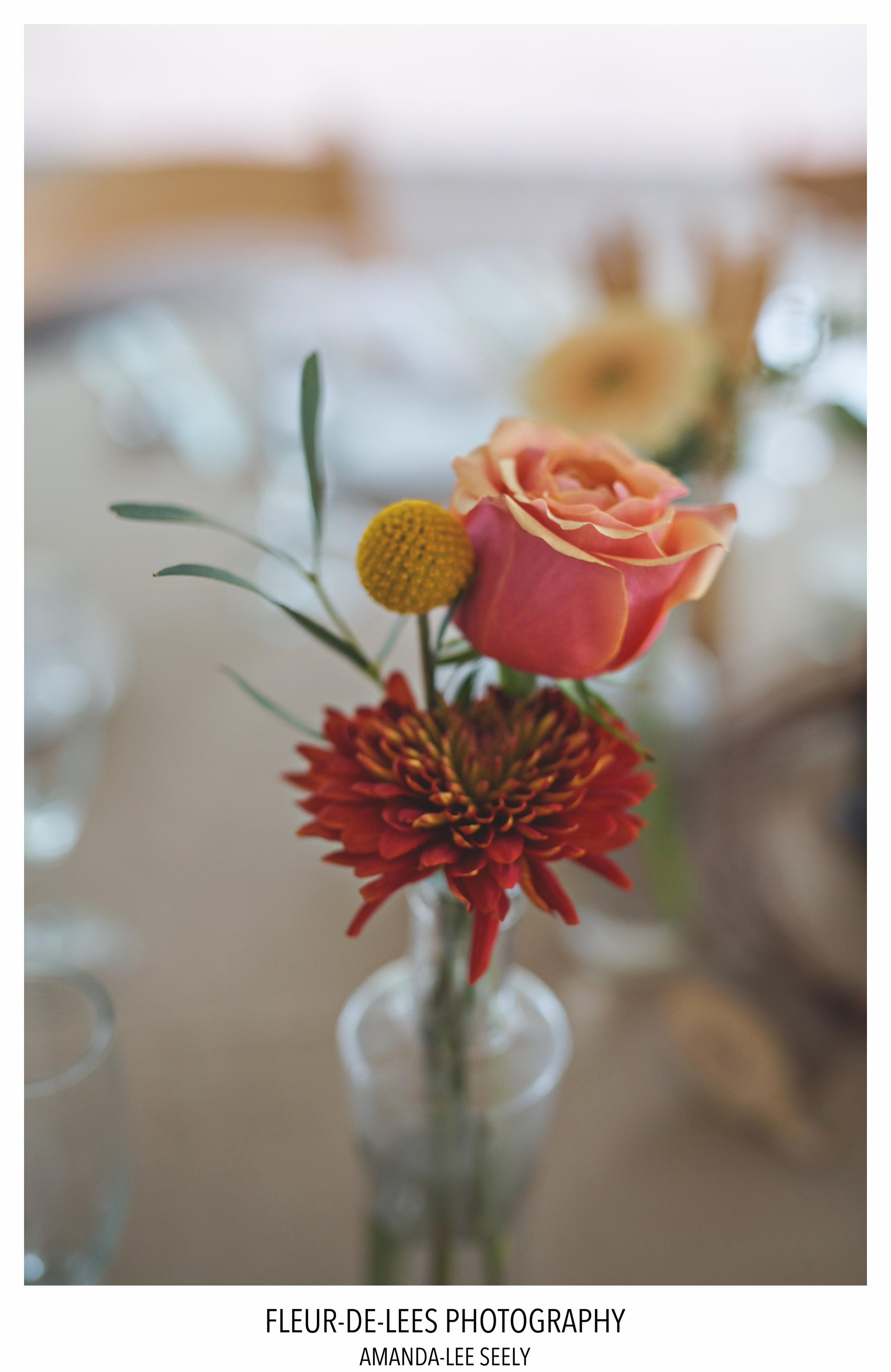 blog-juliet-and-brent-wedding-94