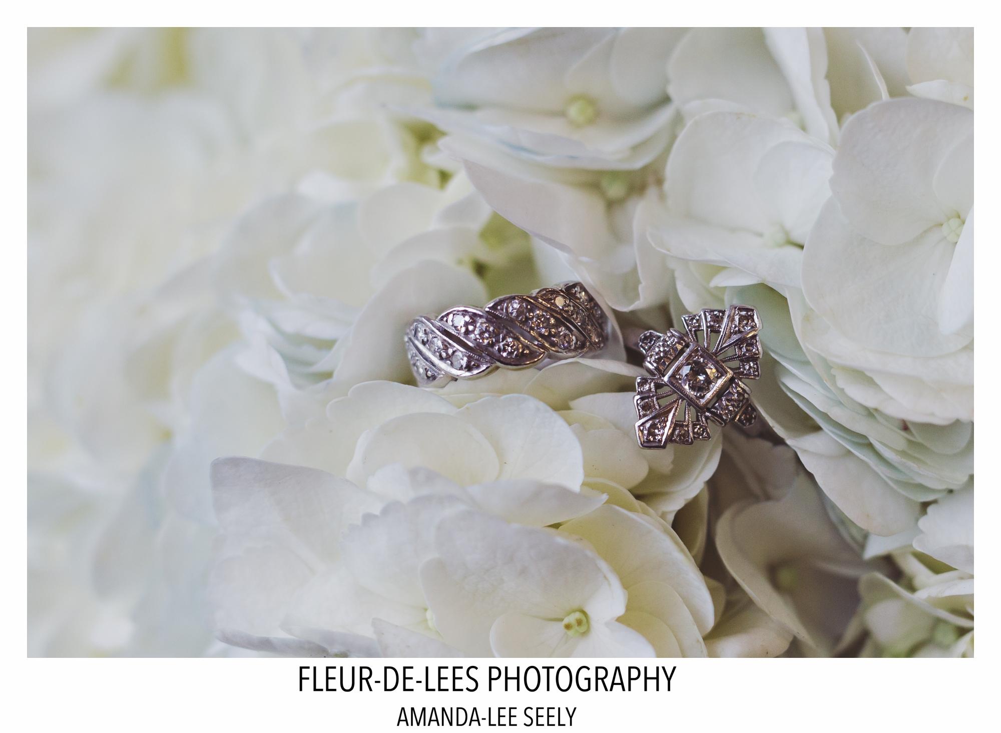blog-lauren-doms-and-steve-wedding-6